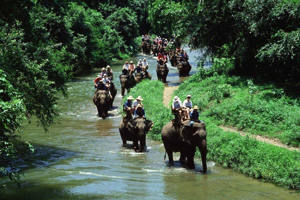 Экскурсии на слонах тайланд